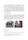 [미래도시] 미래 창조 도시의 발전-7235_04_.jpg