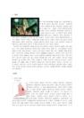[수학사] 아이작 뉴턴의 업적과 생애-6065_02_.jpg