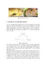 D형 먹방 프로그램 분석-테이스-9361_02_.jpg